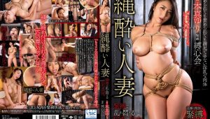 OIGS-034